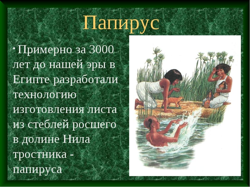 Папирус Примерно за 3000 лет до нашей эры в Египте разработали технологию изг...