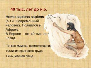 Homo sapiens sapiens (в т.ч. Современный человек). Появился в Африке. В Европ