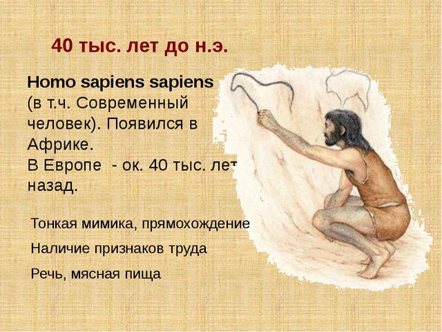 Homo sapiens sapiens (в т.ч. Современный человек). Появился в Африке. В Европ...