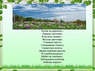Зелень на деревьях – Первые листочки. И на всех газонах – Желтые цветочки. У