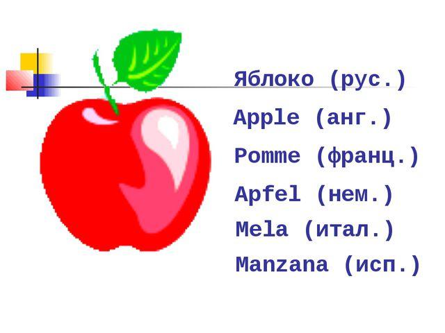 Яблоко (рус.) Apple (анг.) Apfel (нем.) Manzana (исп.) Mela (итал.) Pomme (фр...