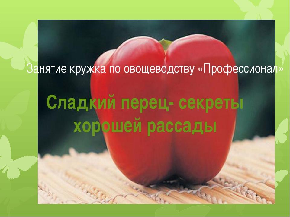 Занятие кружка по овощеводству «Профессионал» Сладкий перец- секреты хорошей...