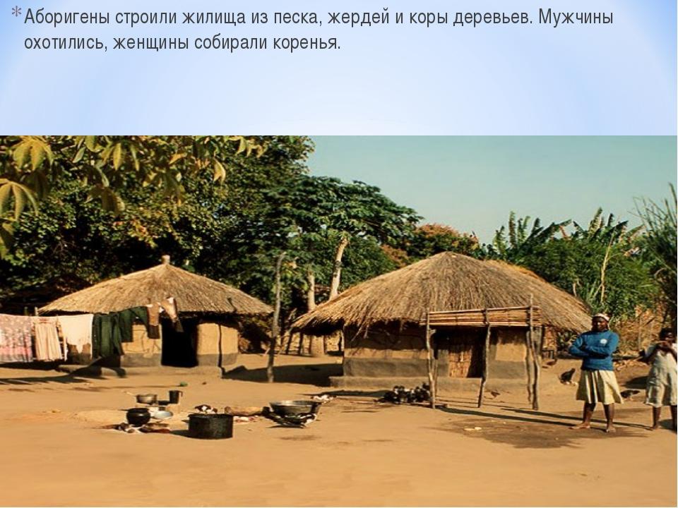 Аборигены строили жилища из песка, жердей и коры деревьев. Мужчины охотились,...