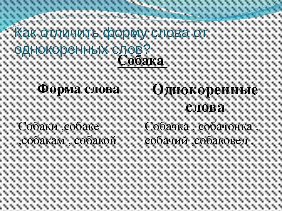 Как отличить форму слова от однокоренных слов? Собака Форма слова Однокоренны...