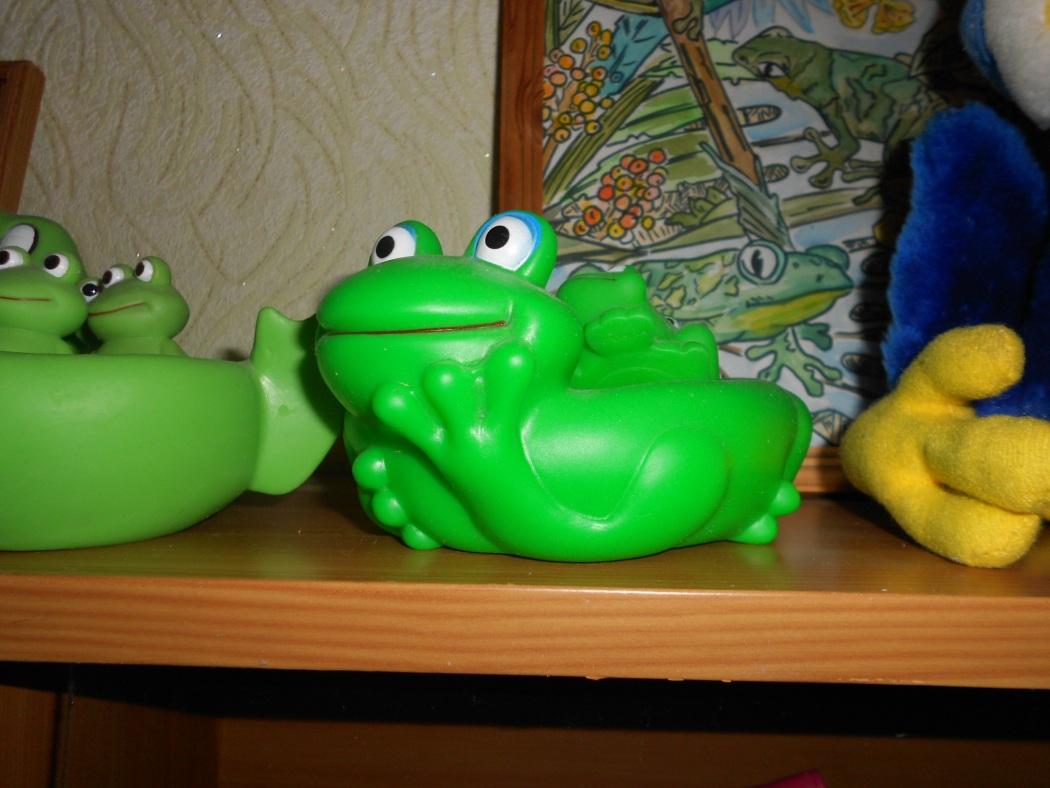 C:\Users\Jonic\Pictures\2014\папка с лягушками и Людмилой\DSCN4006.JPG