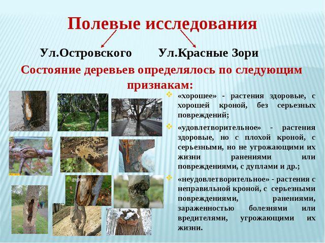 Состояние деревьев определялось по следующим признакам: «хорошее» - растения...