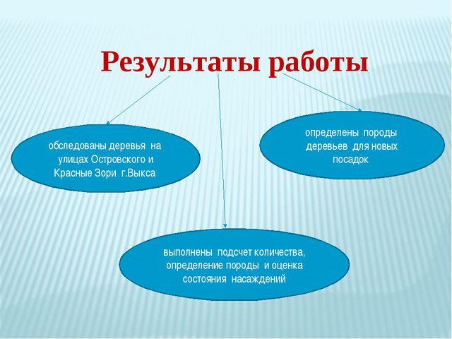 Результаты работы обследованы деревья на улицах Островского и Красные Зори г...