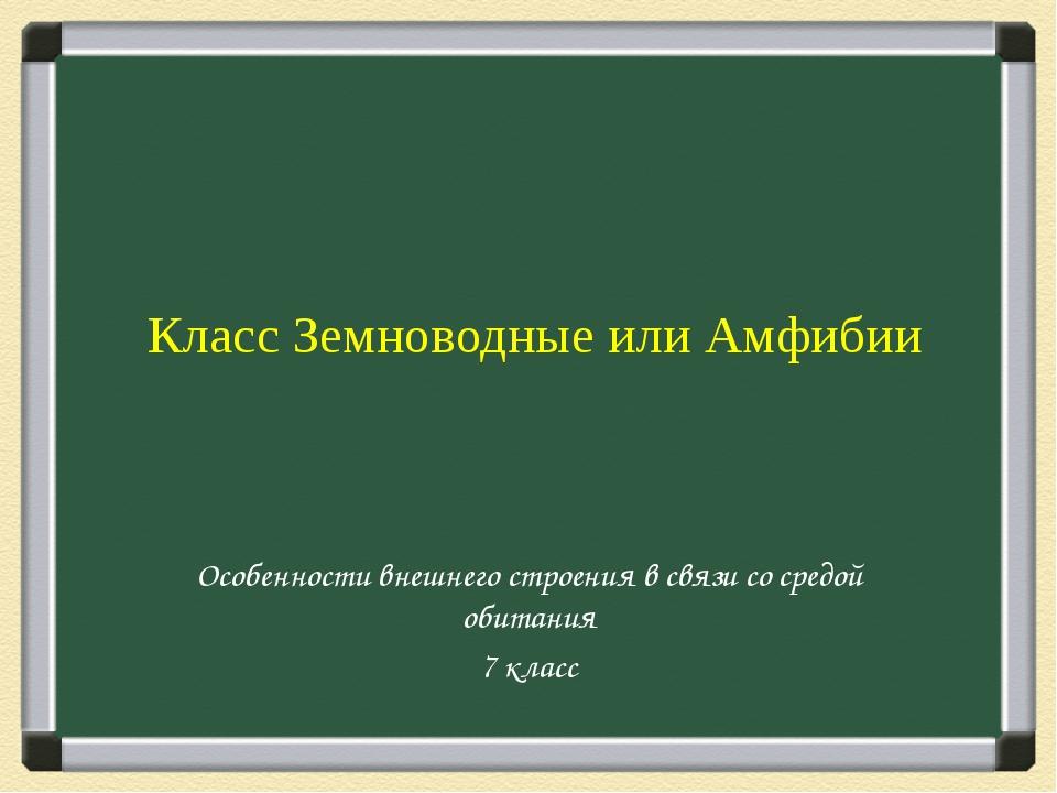 Класс Земноводные или Амфибии Особенности внешнего строения в связи со средо...