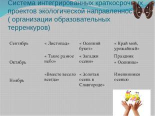 Система интегрированных краткосрочных проектов экологической направленности (