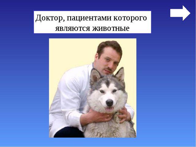 Ветеринар Доктор, пациентами которого являются животные