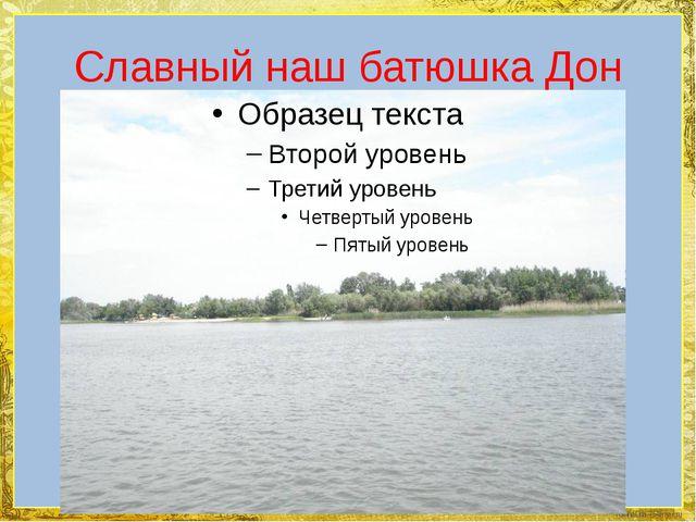 Славный наш батюшка Дон FokinaLida.75@mail.ru