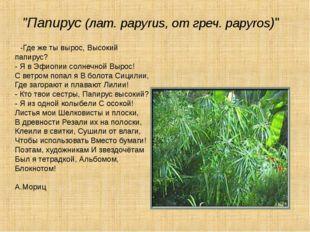 """""""Папирус (лат. papyrus, от греч. papyros)"""" -Где же ты вырос, Высокий папирус"""