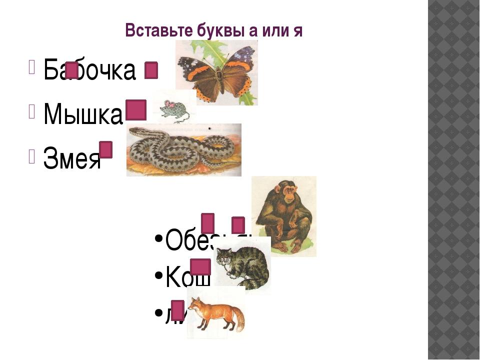 Вставьте буквы а или я Бабочка Мышка Змея Обезьяна Кошка лиса