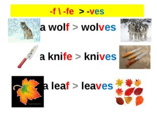 -f \ -fe > -ves a wolf > wolves a knife > knives a leaf > leaves