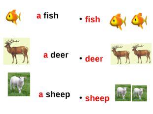 a fish a deer a sheep fish deer sheep