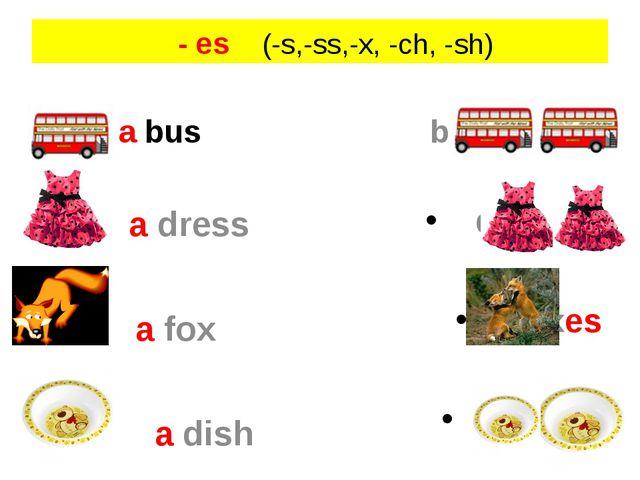 - es (-s,-ss,-x, -ch, -sh) a bus a dress a fox a dish buses dresses foxes di...