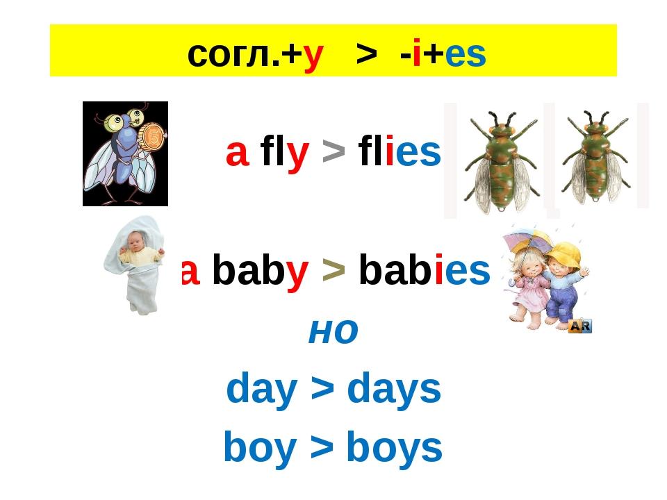 cогл.+y > -i+es a fly > flies a baby > babies но day > days boy > boys