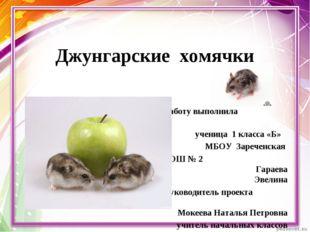 Джунгарские хомячки Работу выполнила ученица 1 класса «Б» МБОУ Зареченская СО