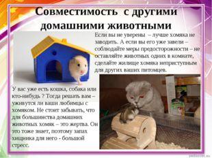Совместимость с другими домашними животными У вас уже есть кошка, собака или