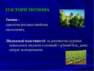 ІЗ ІСТОРІЇ ТЮТЮНА Тютюн – однолітня рослина сімейства пасльонових. Лікувальні