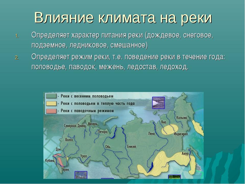 Влияние климата на реки Определяет характер питания реки (дождевое, снеговое,...