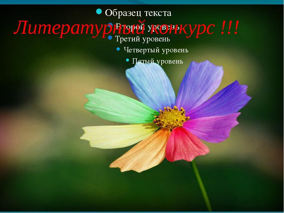 Литературный конкурс !!!