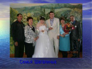 Семья Шагалиных