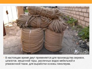 В настоящее время джут применяется для производства веревок, шпагатов, мешочн