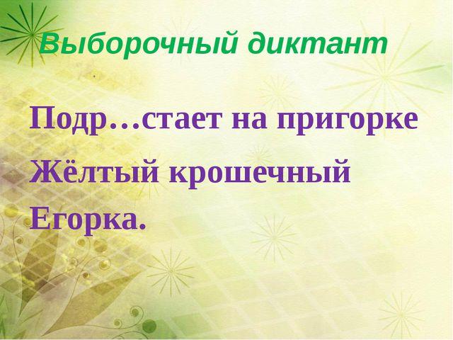 Выборочный диктант Подр…стает на пригорке Жёлтый крошечный Егорка.