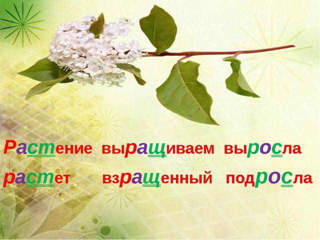 Растениевыращиваемвыросла растет взращенныйподросла