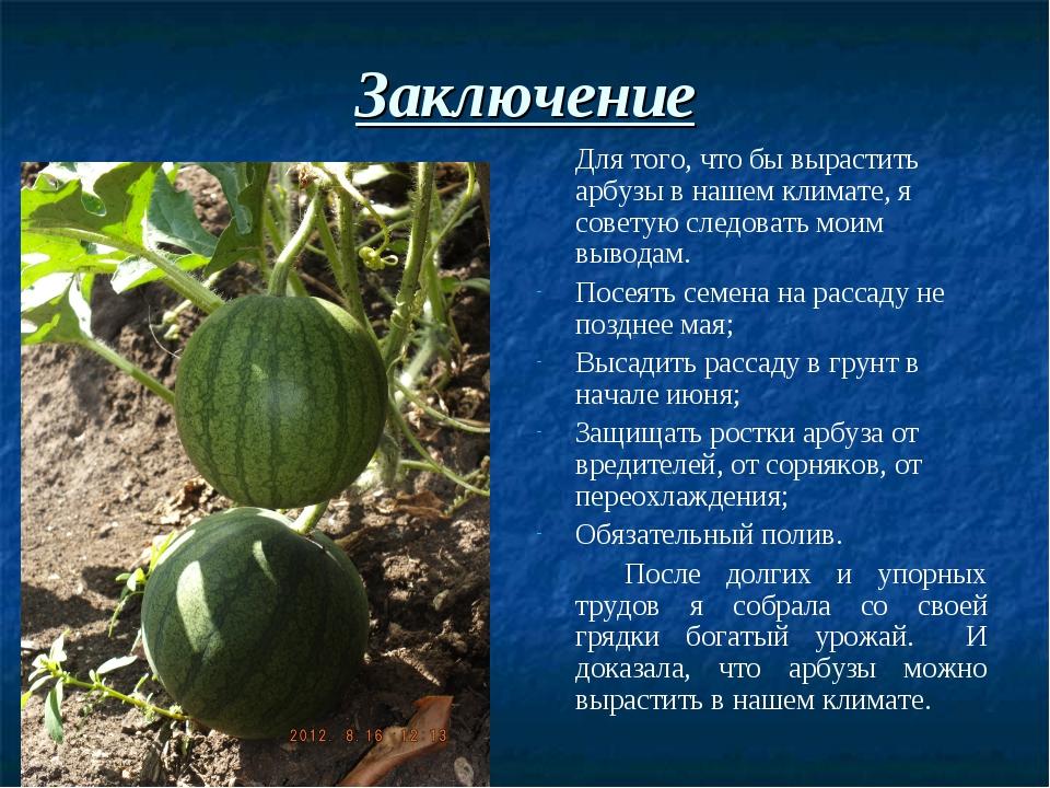 Заключение Для того, что бы вырастить арбузы в нашем климате, я советую след...