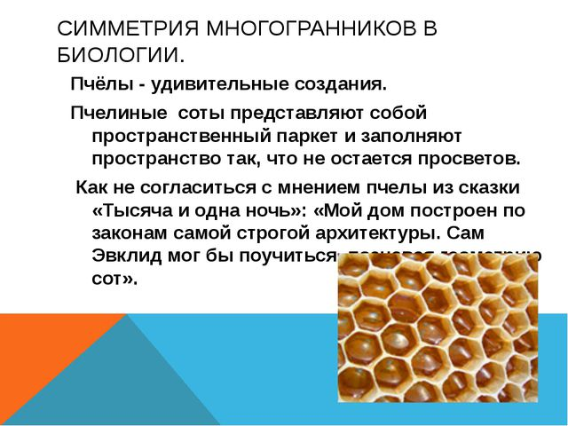 СИММЕТРИЯ МНОГОГРАННИКОВ В БИОЛОГИИ. Пчёлы - удивительные создания. Пчелиные...