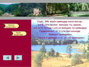 Орман ресурстары Табиғат ресурстары Орман ресурстары Елдің 30% жерін орманда