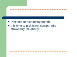 Pitchfork or hay drying month; It is time to pick black currant, wild strawbe