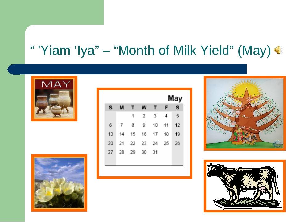 """ 'Yiam 'Iya"" – ""Month of Milk Yield"" (May)"