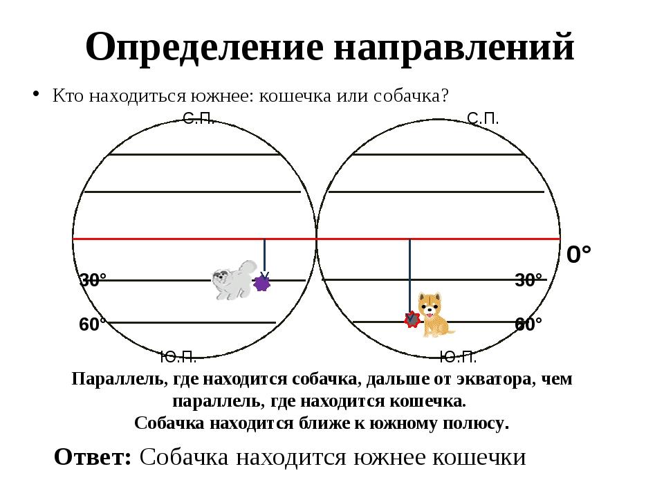 Определение направлений Кто находиться южнее: кошечка или собачка? 0° Ответ:...