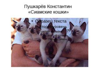 Пушкарёв Константин «Сиамские кошки»