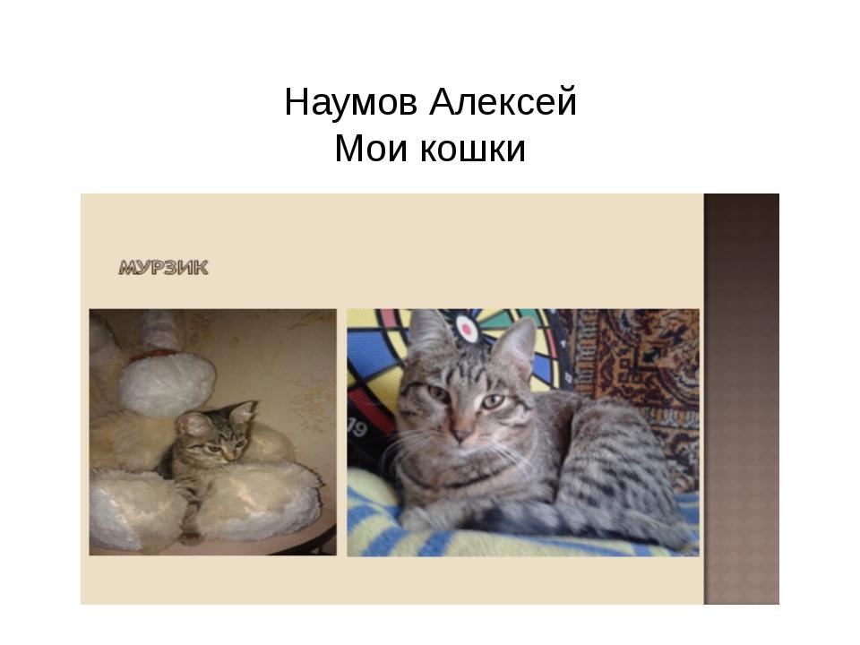 Наумов Алексей Мои кошки