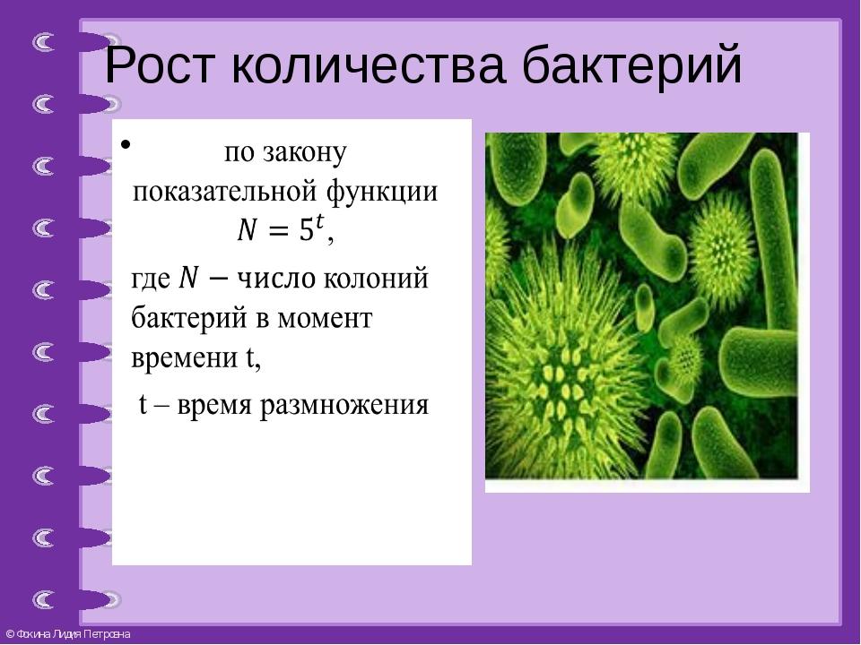 Рост количества бактерий © Фокина Лидия Петровна