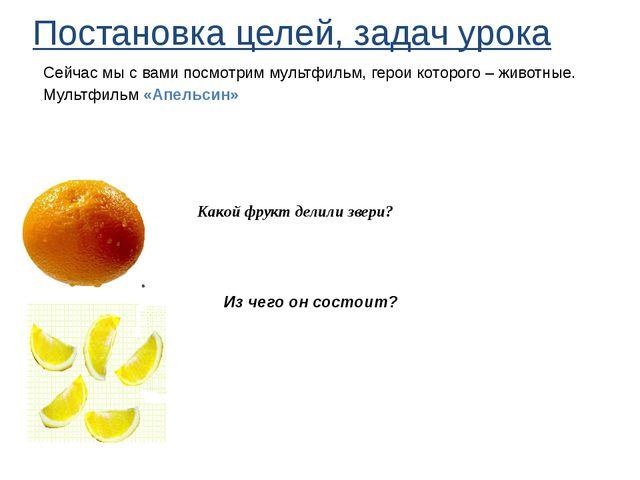 Какой фрукт делили звери? Из чего он состоит? Постановка целей, задач урока...