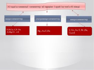 Ағзадағы химиялық элементтер мөлшеріне қарай үш топқа бөлінеді макроэлементте