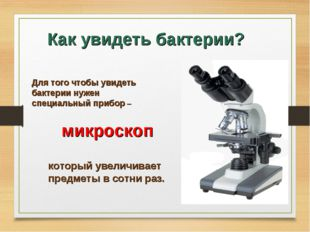 Как увидеть бактерии? Для того чтобы увидеть бактерии нужен специальный прибо