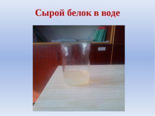 Сырой белок в воде