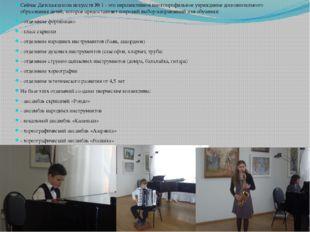 Сейчас Детская школа искусств № 1 - это перспективное многопрофильное учрежде