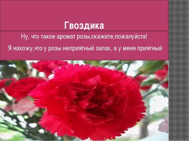 Гвоздика Ну, что такое аромат розы,скажите,пожалуйста! Я нахожу,что у розы не...