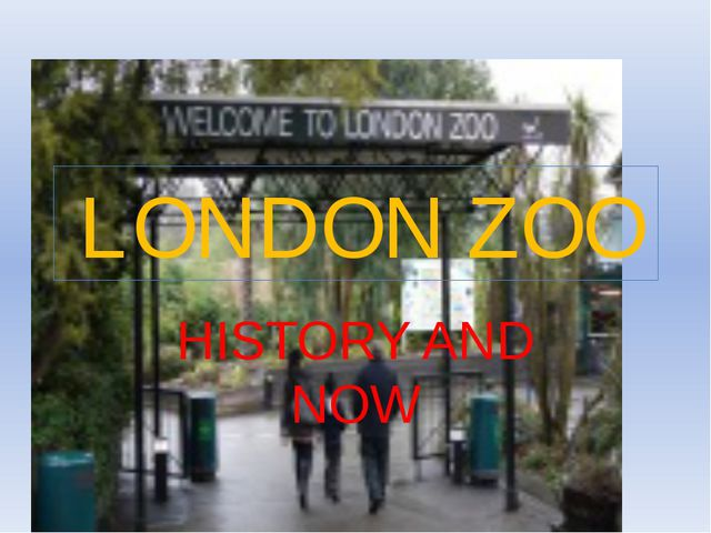 LONDON ZOO HISTORY AND NOW