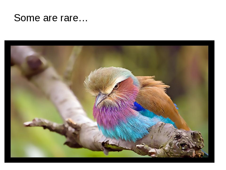 Some are rare…