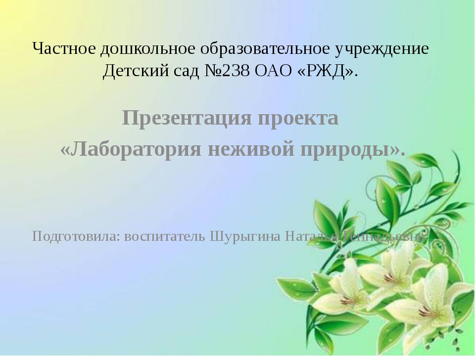 Частное дошкольное образовательное учреждение Детский сад №238 ОАО «РЖД». Пре...