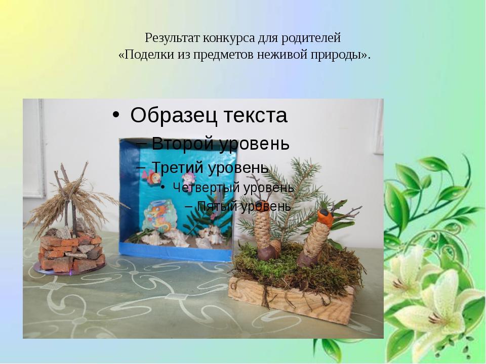 Результат конкурса для родителей «Поделки из предметов неживой природы».