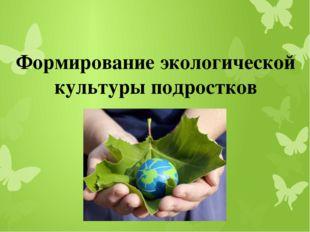 Формирование экологической культуры подростков